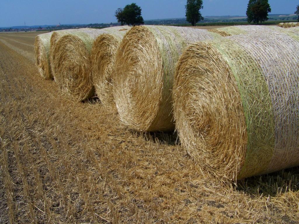 straw-bales-893802_1920